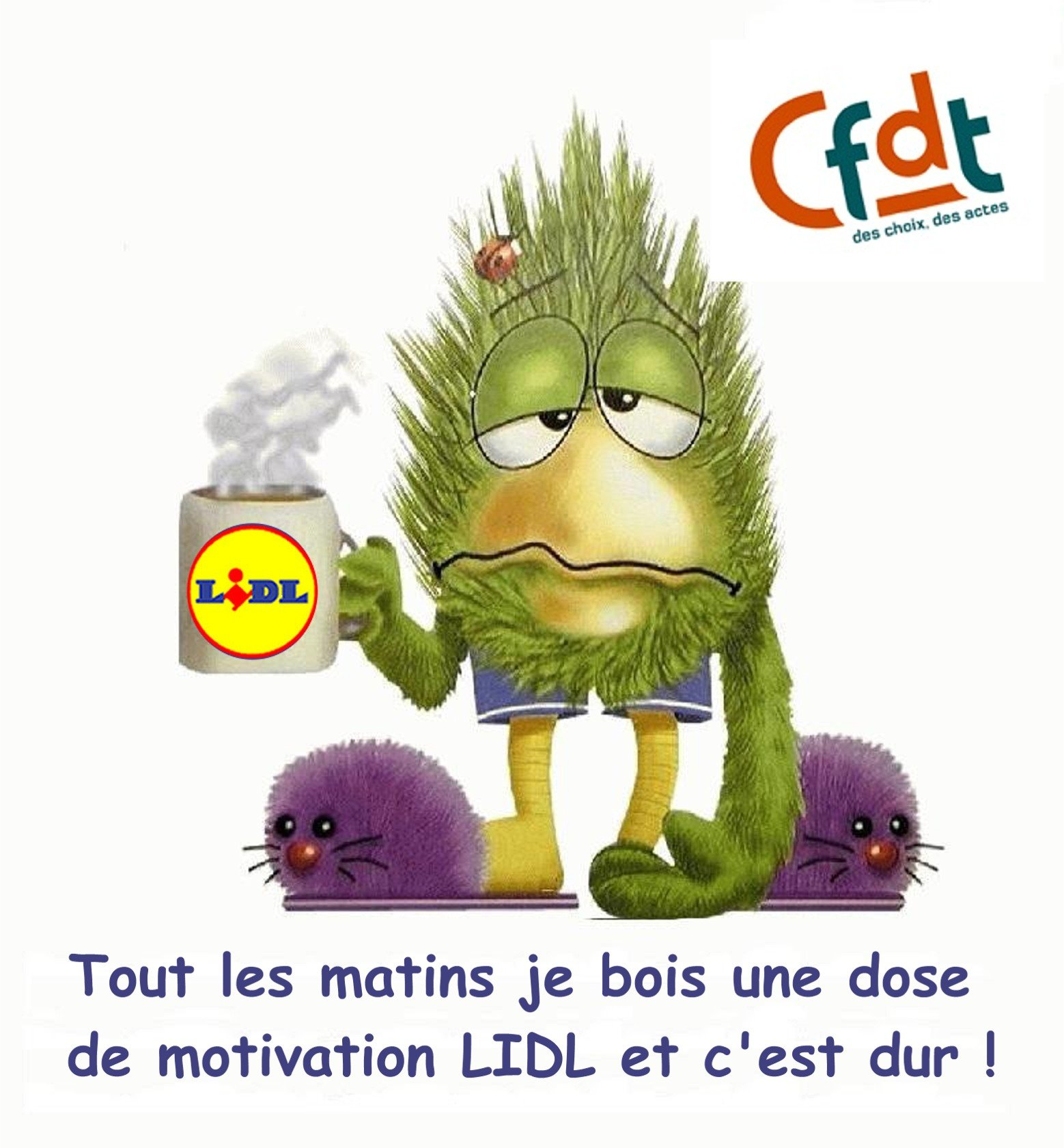 CAT , CGT , CFTC , FO , CGC , UNSA , CFDT les syndicats chez Lidl motivationlidl